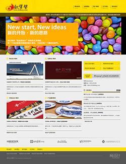 网站设计公司dede模板